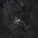 Too Many Stars!,                                Sarah Longcor