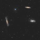 LeoTriplet (M65,M66,NGC3628),                                johnnywang