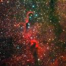 Elephant's Trunk Nebula,                                Ofiuco