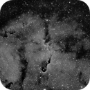 IC 1396 Elephant's Trunk Nebula,                                Michael Capurso
