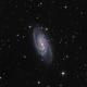 Galaxy NGC 2903,                                Axel Rau