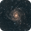 IC 342 Hidden Galaxy,                                JoAnn