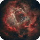 Rosette Nebula (NGC2244) - HOO,                                Gary Lopez
