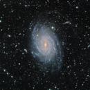 NGC 6744 - Galaxie Spirale dans la constellation du Paon.,                                Roger Bertuli