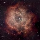 Rosette Nebula,                                James R Potts