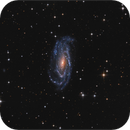 NGC 5033 Seyfert galaxy,                                sky-watcher (johny)