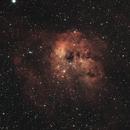 IC 410 Tadpoles nebula,                                carl monfils