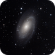 M81: Bode's Nebula,                                Chris Bernardi