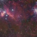 M42、IC434,                                Chao-Nien Tsao