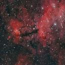 IC4628 Prawn Nebula - NGC6231,                                Michel Lakos M.