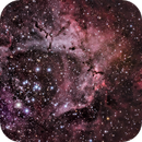 NGC 2239,                                Jan Schneidler