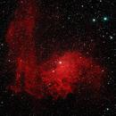 IC 405 - Flaming Star Nebula,                                Randy Roy