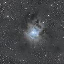 Iris Nebula,                                VulpescuChristian