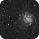 M101 Luminance,                                Maxime Delin