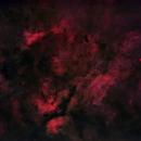 Gamma Cygni Nebula, Sadr, and Crescent Nebula (Starless),                                David McGarvey