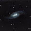 NGC 2903 - 2905,                                Richard Willits