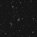 IC 1228,                                sky-watcher (johny)