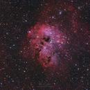 IC 410 - The Tadpole Nebula in RGB,                                DanielZoliro