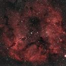IC1396 - The Elephant's Trunk Nebula,                                Ryan