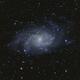 The Triangulum Galaxy,                                Nikita P