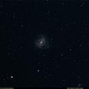 M83 Southern Pinwheel Galaxy,                                Uri Abraham