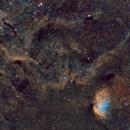 SH2-101 SHO Tulip Nebula,                                José Tapia Janet