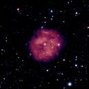 IC 5146 Cocoon Nebula,                                Robert Van Vugt