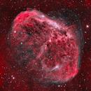 The Crescent Nebula In Bicolor,                                BBRAUNCCP