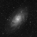M33 Luminance,                                Antonio.Spinoza