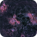 Nebulas  zone in LMC  NGC2014  - NGC 1968 - NGC2020 - IC2128,                                Michel Lakos M.