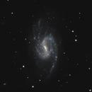 NGC 3359,                                Gary Imm