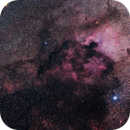 North American and Pelican Nebulae,                                Ahmed Waddah