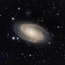 Bode's Galaxy (M81) - HaLRGB,                                dswtan