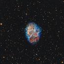 M1 Crab Nebula,                                Stan Smith