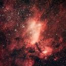 IC4628 (Prawn Nebula),                                Timothy O'Connor