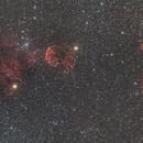 Jellyfish Nebula & Monky Head Nebula,                                KojiTajima