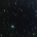 Comet Iwamoto,                                Lorenzo