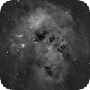 IC410 - Tadpole Nebula H alpha - full Moon,                                bobzeq25