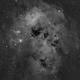 IC410 - Tadpole Nebula H alpha - full Moon,                                bobzeq25