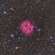 IC 5146 The Cocoon Nebula,                                karambit27