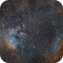 SH2-171 NGC 7822 on RASA 8 in SHO,                                Piet Vanneste
