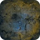 IC1396,                                Adam Jaffe