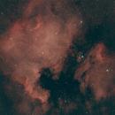 North America and Pelican Nebulae,                                David Johnson