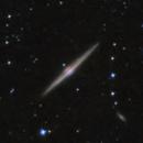 NGC 4565 Needle Galaxy,                                Roland Schliessus