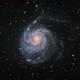M101,                                Everett Lineberry