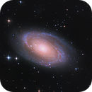 Bode's and Cigar Galaxies,                                Tommy Lease