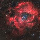Rosette Nebula,                                Mark