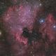 NGC 7000,                                noodle