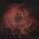 Rosette nebula,                                Tom914