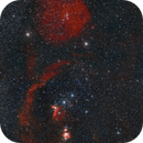Orion: Loop and Head,                                Martin Mutti